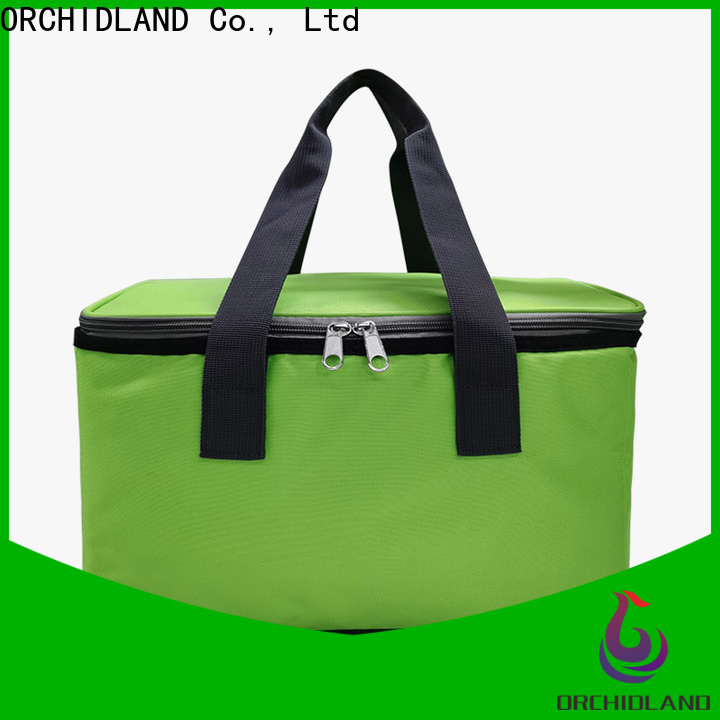 Customized custom lunch cooler factory price for driving trips